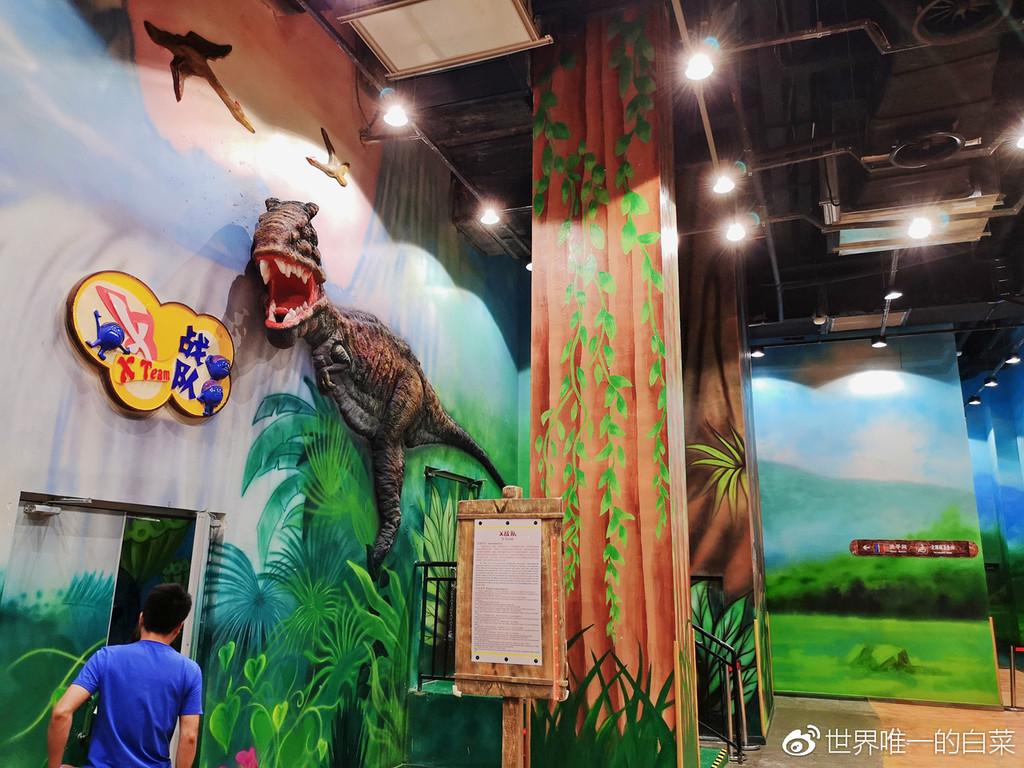 魔法动物森林 有点像科普教育园区,这里汇集了海陆空动物趣味展示,萌