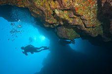 莫洛基尼火山岛浮潜-夏威夷-兔爺