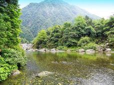 龙门河国家森林公园-神农架-半把刀